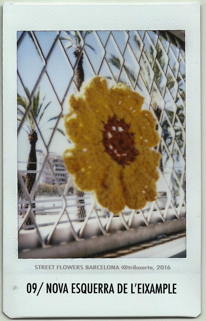 09_DISTRITO 2 STREET FLOWERS BARNA-9.jpg