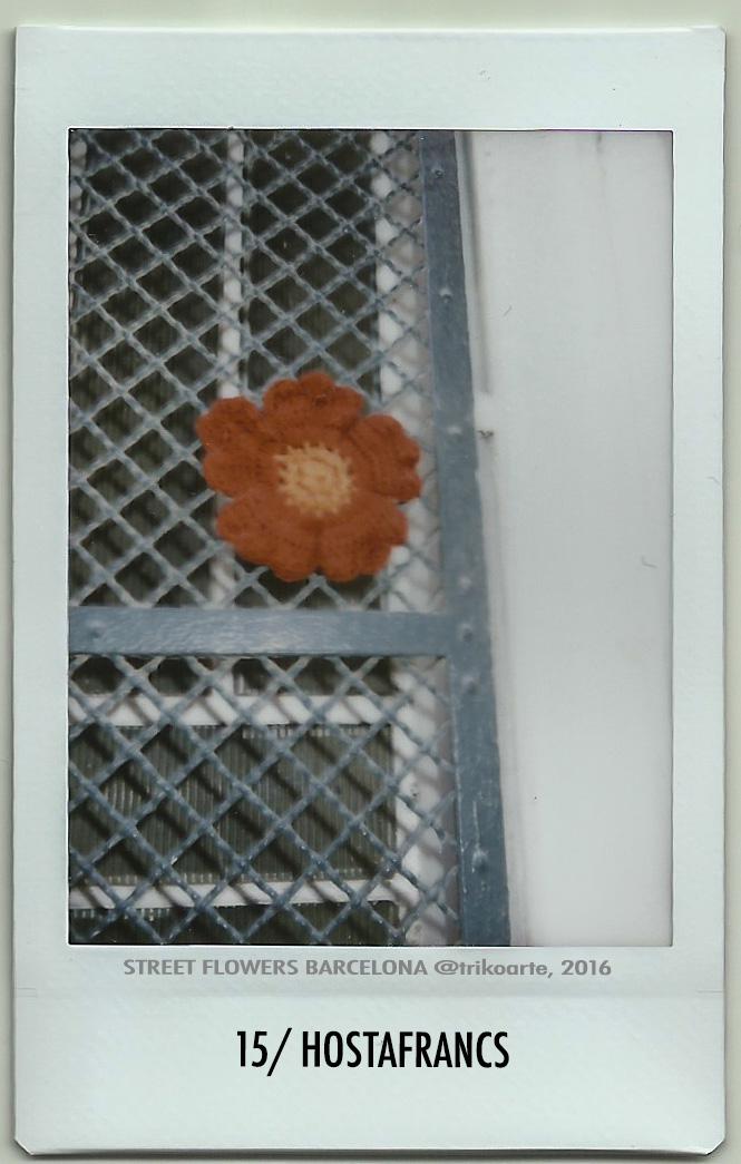 15_DISTRITO 3 STREET FLOWERS BARNA-15.jpg