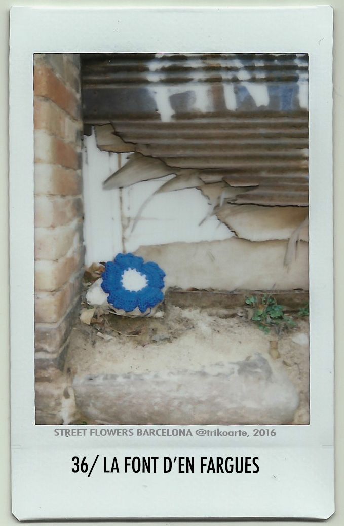 36_DISTRITO 7 1 de 2 STREET FLOWERS BARNA-36.jpg