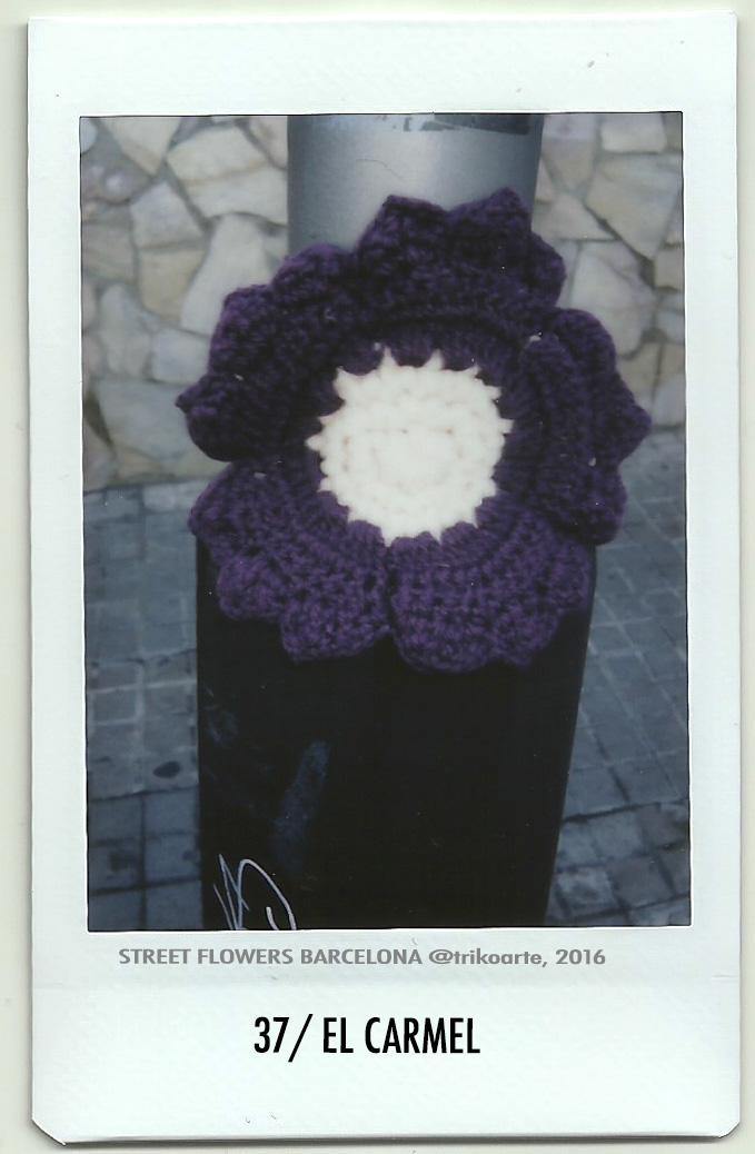 37_DISTRITO 7 1 de 2 STREET FLOWERS BARNA-37.jpg