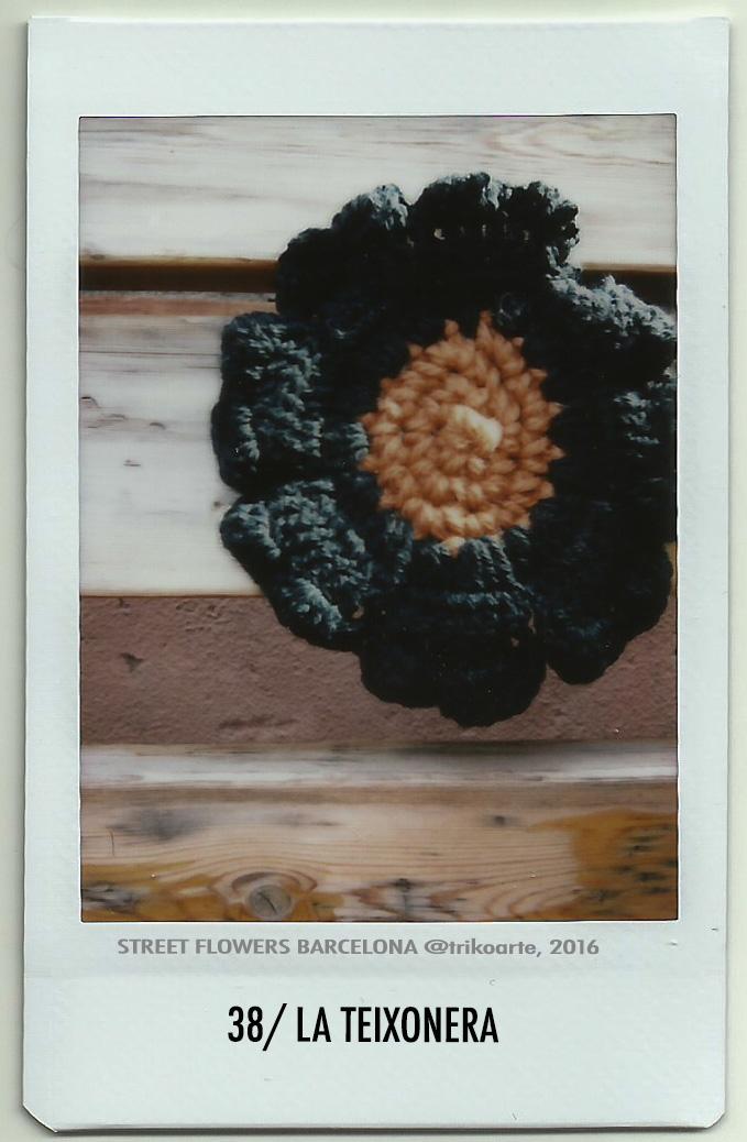 38_DISTRITO 7 1 de 2 STREET FLOWERS BARNA-38.jpg