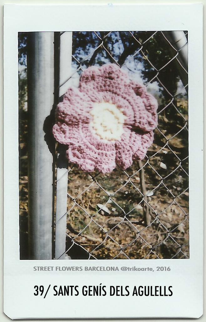 39_DISTRITO 7 2 de 2 STREET FLOWERS BARNA-39.jpg