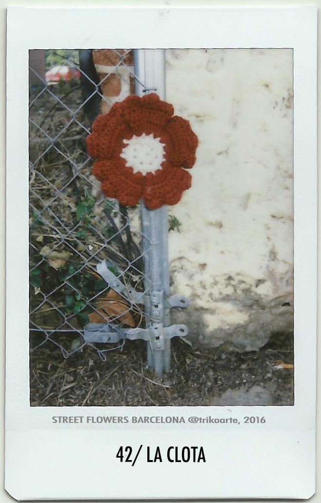 42_DISTRITO 7 2 de 2 STREET FLOWERS BARNA-42.jpg