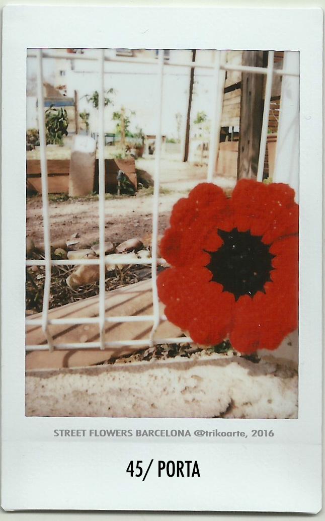 45_DISTRITO 8 1 de 2 STREET FLOWERS BARNA-45.jpg