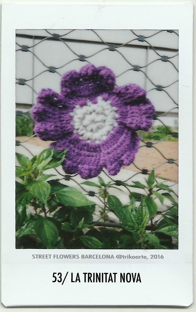 53_DISTRITO 8 2 de 2 STREET FLOWERS BARNA-53.jpg