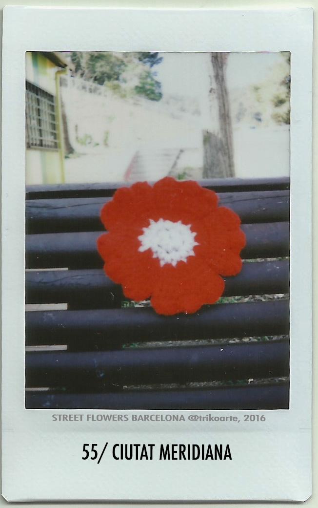 55_DISTRITO 8 2 de 2 STREET FLOWERS BARNA-55.jpg
