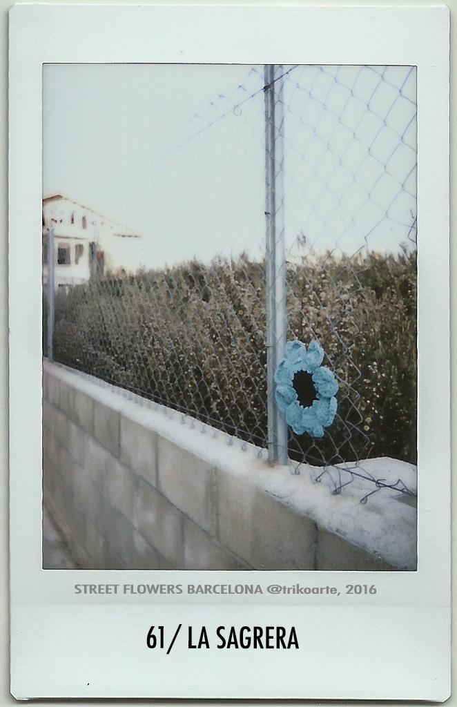 61_DISTRITO 9 STREET FLOWERS BARNA-61.jpg