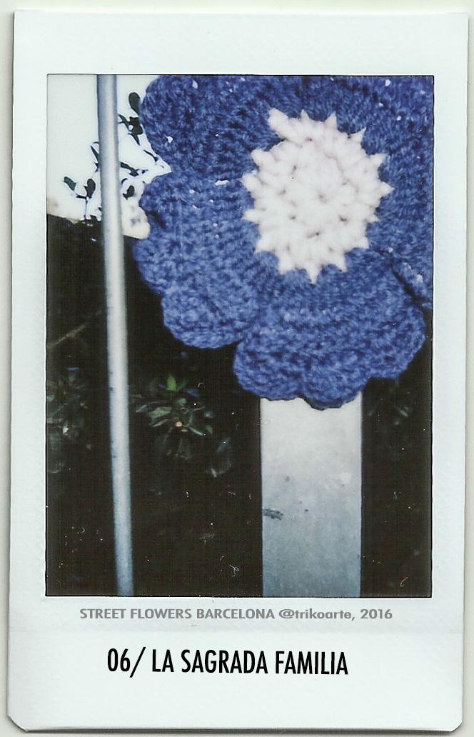 STREET FLOWERS, BARCELONA
