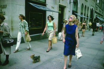 Joel Meyerowitz,  (1975)  New York City.  [print] [online image]. Place: Edwynn Hook Gallery, NY. Available from: http://www.egodesign.ca/en/article_print.php?article_id=30 [Accessed 12 May 2014].