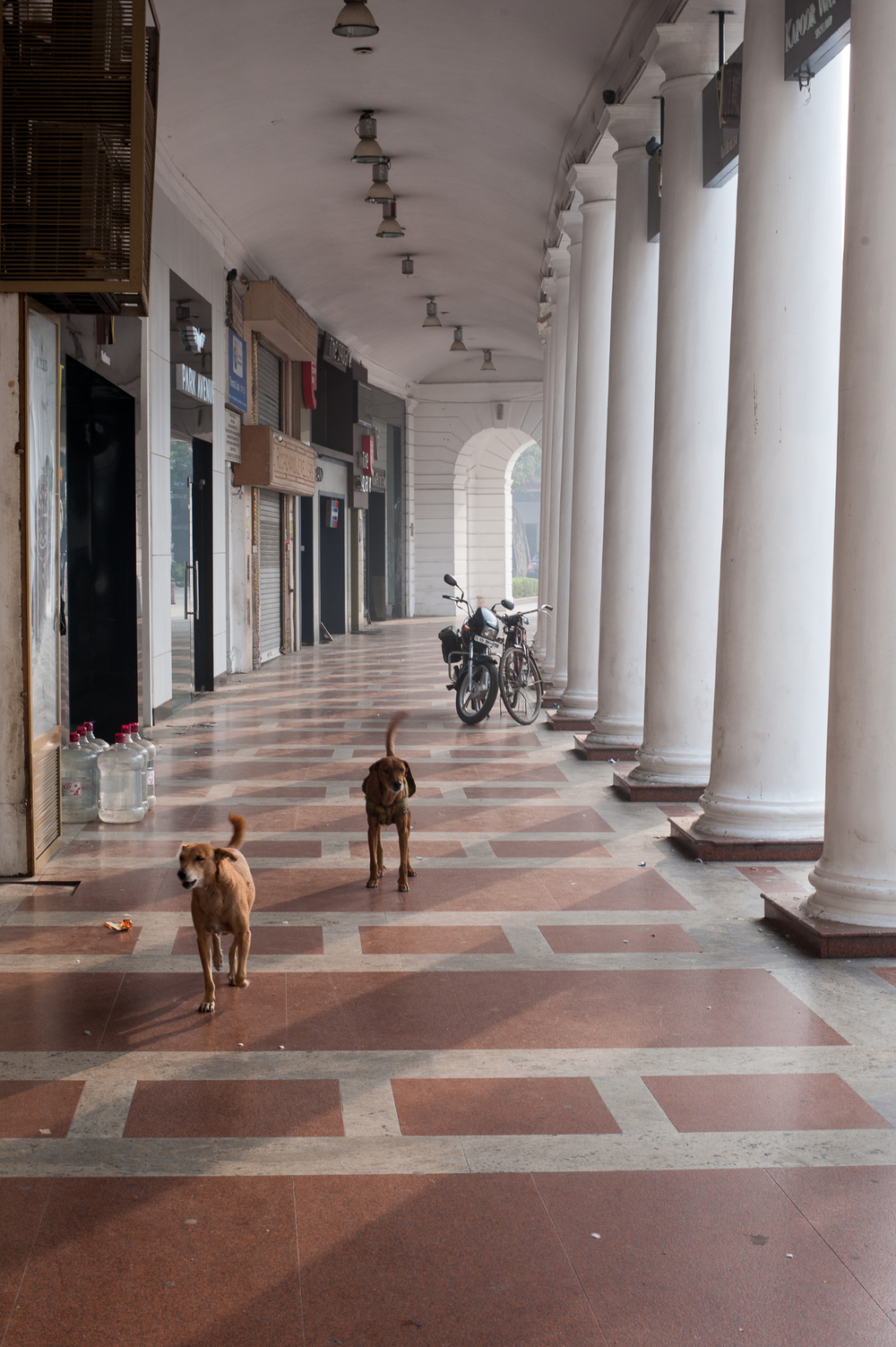 Delhi street-2.jpg