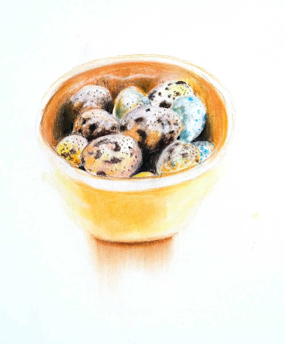 Quail eggs in orange and yellow bowl. Pastel on Stonehenge Paper. Fall 2016