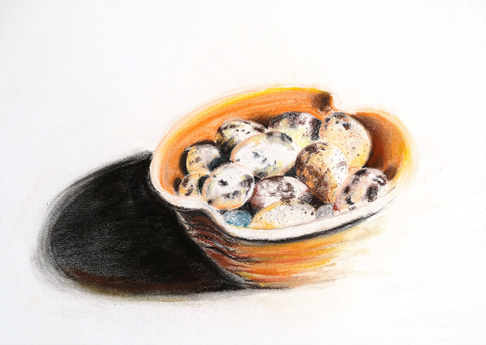 Quail eggs in orange bowl with charcoal shadow