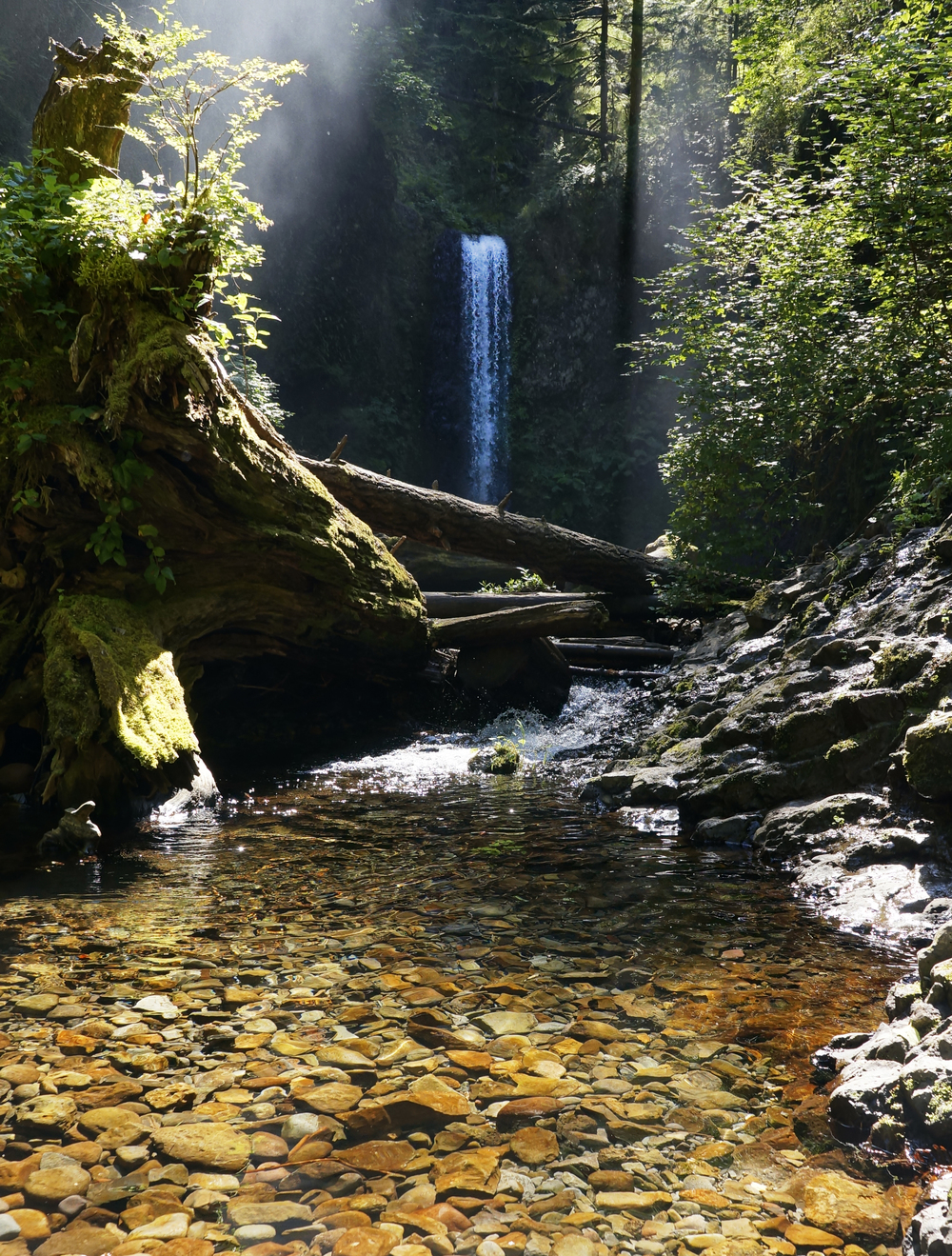 Oregon Waterfall.jpg