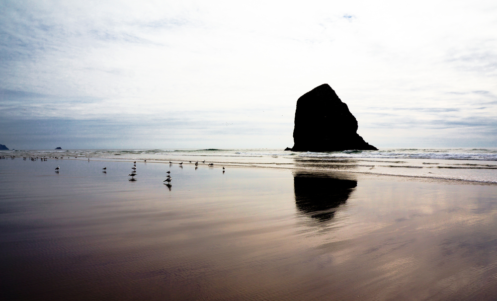 Cannon Beach Copper.jpg