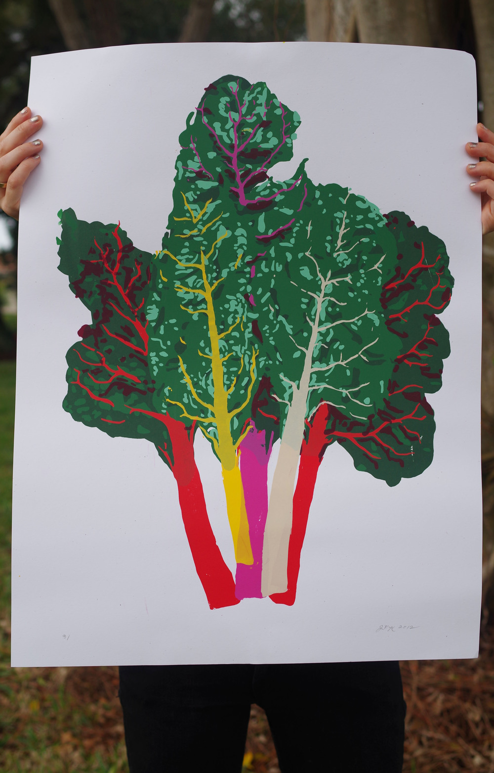 Winter Harvest: Rainbow Chard Print Photo by: Dan Aguayo