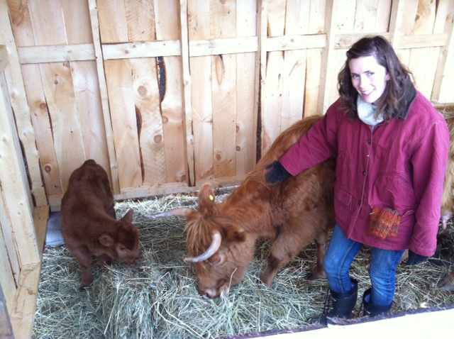 My girl Sugar and her calf, Copper