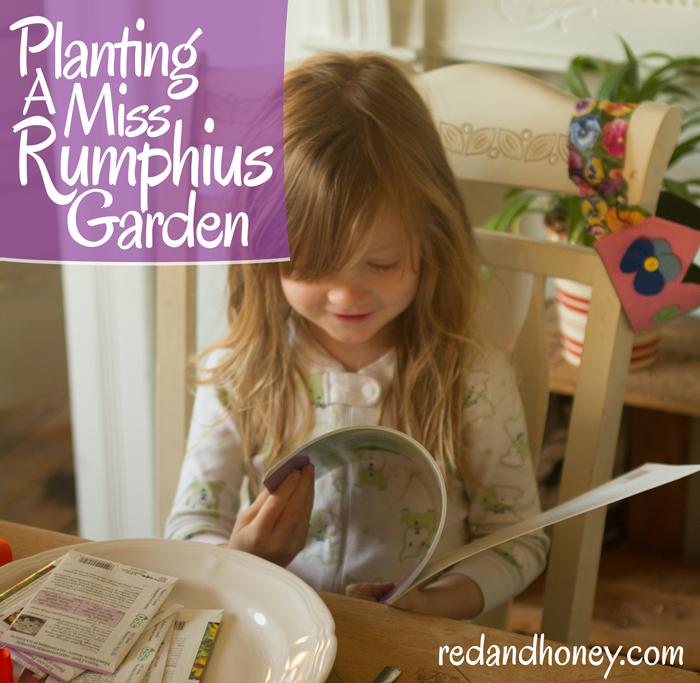 rumphius.jpg