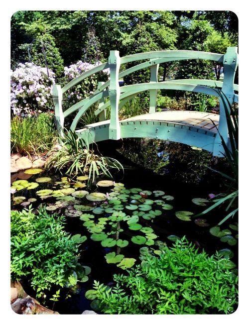 arboretum5812.jpg