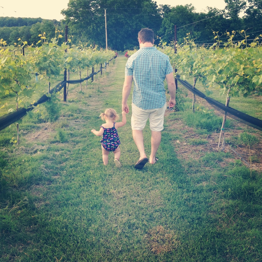 Exploring Arrington vineyards.