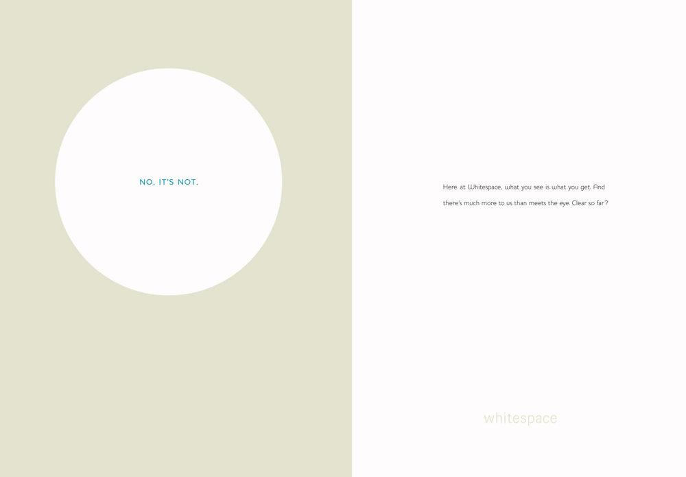 Whitespace book p 2 & 3.jpg
