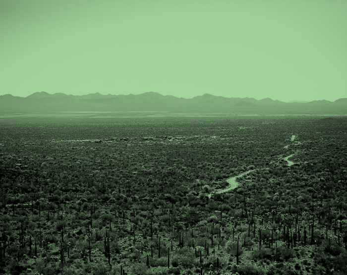 arizona-3.jpg