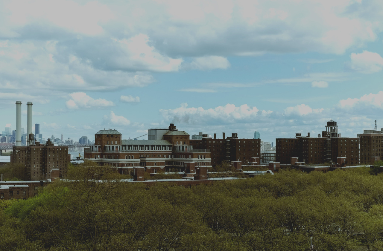 Atlantic Yards from Fort Greene Park