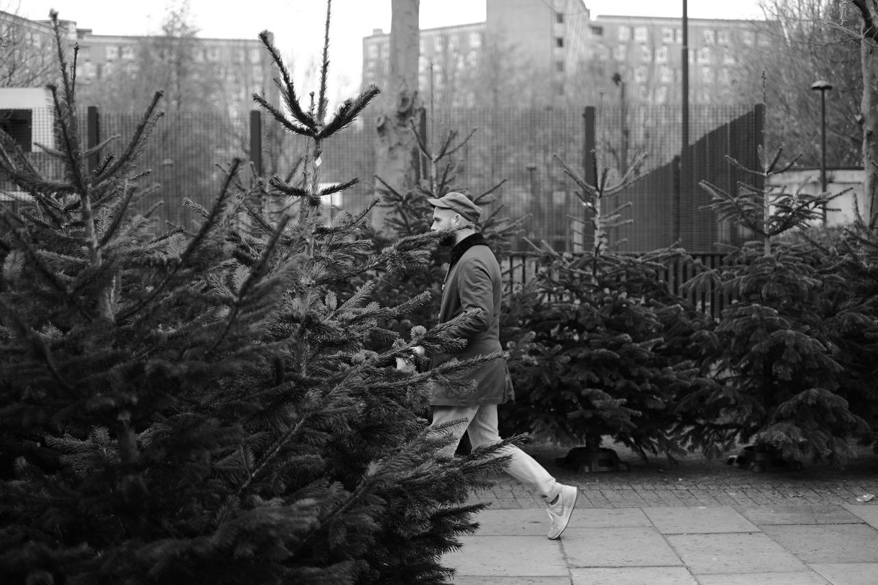 Man amongst trees. Columbia Street Flower Market