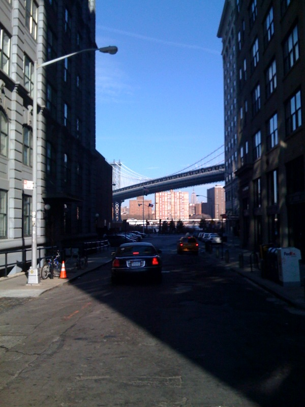 Good morning dumbo