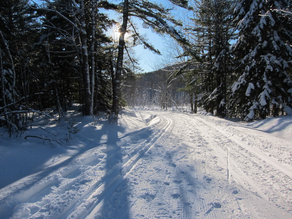 Carriage Trail in Snow