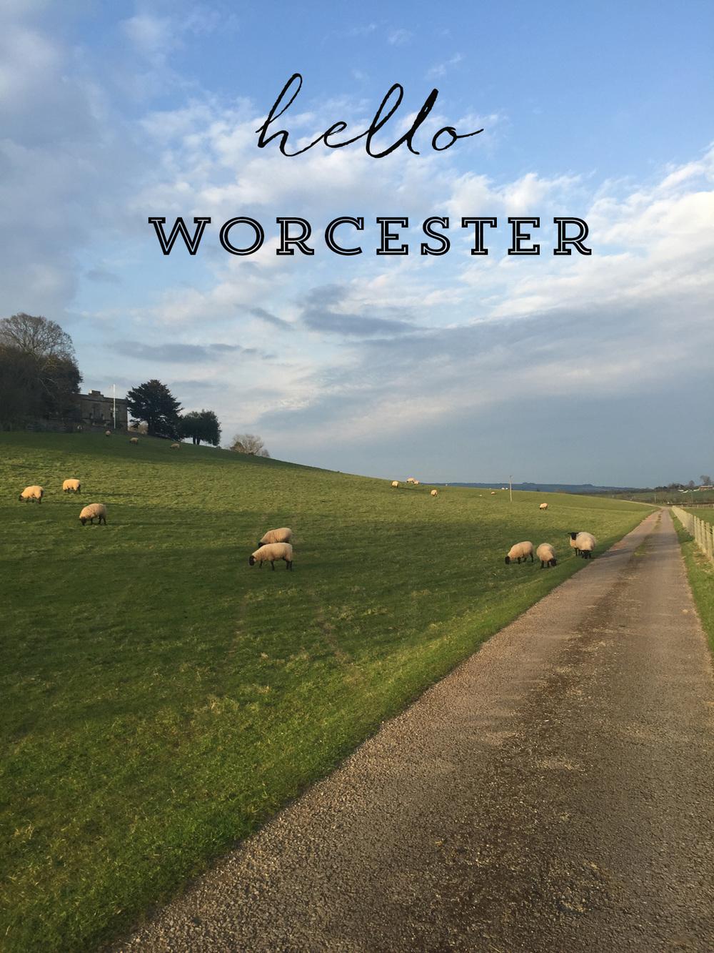 Worcester | Azzari Jarrett