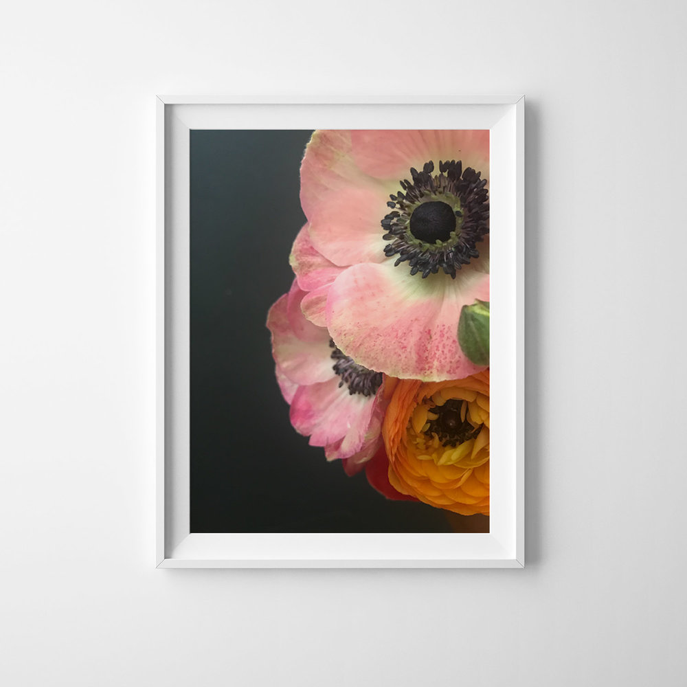Azzari Jarrett | Anemone Collection Fine Art Print