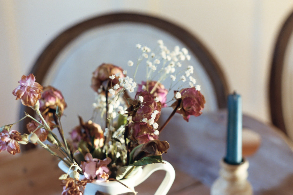 Dried flowers on 35mm film by Azzari Jarrett