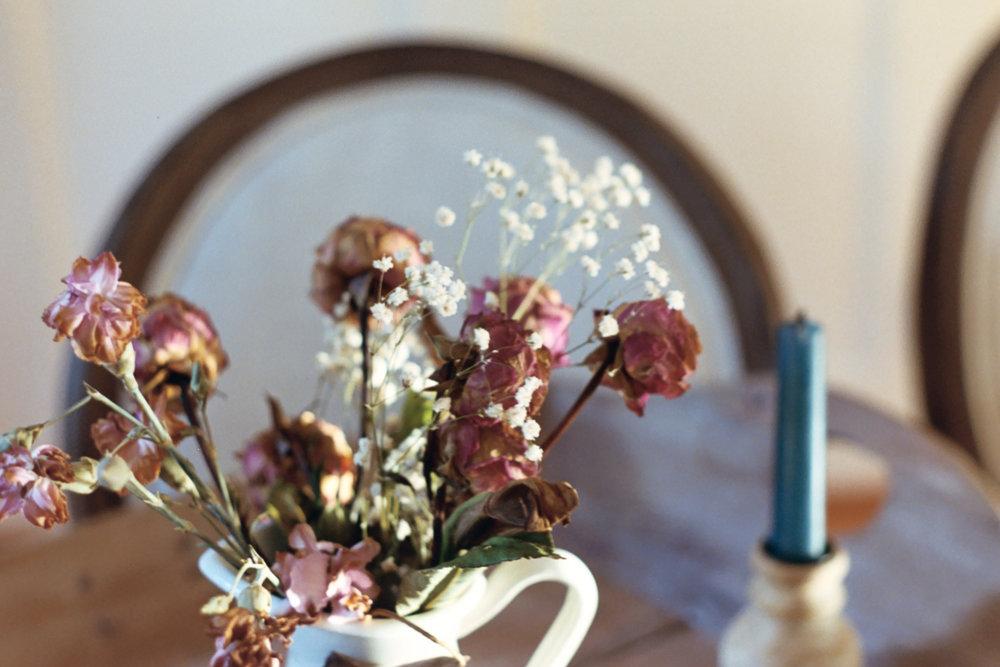 Dried flowers on 35mm film by Azzari Jarrett