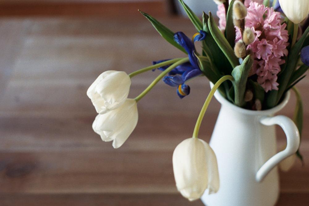 Florals on Film by Azzari Jarrett