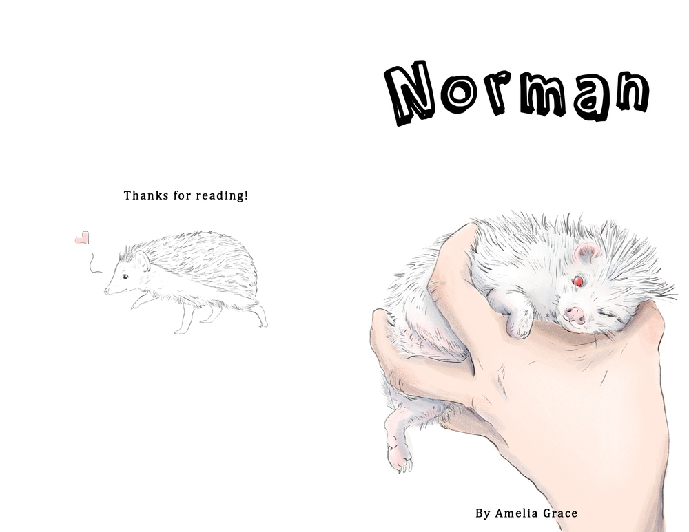Norman front and back Cover.jpg