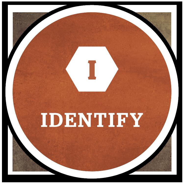 RS.IDPM.Identify.Circle.png