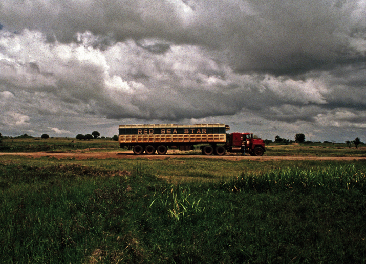 The Mack Crossing Tanzania