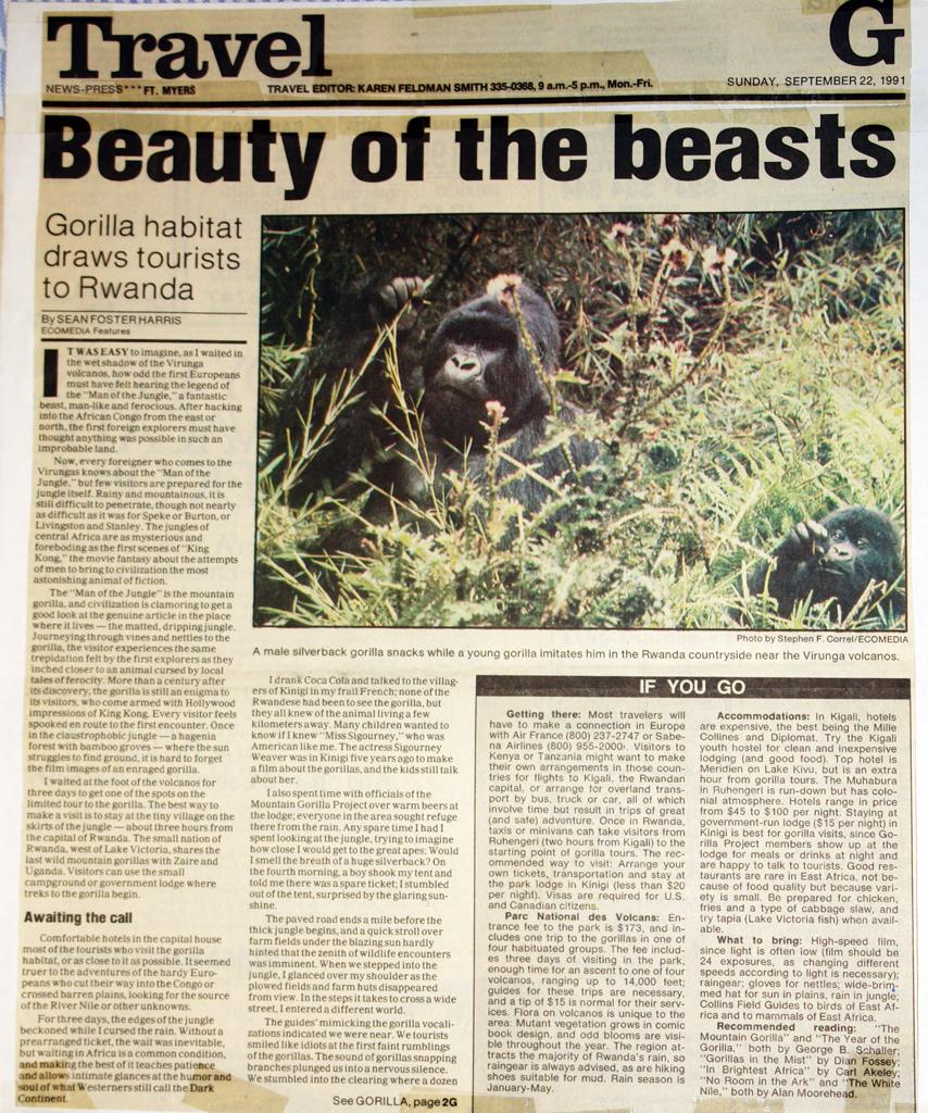 arr gorilla story 1024.jpg