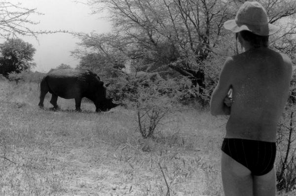 Rhinos Wake Blue