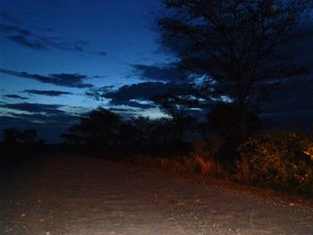 UG dark road.jpg