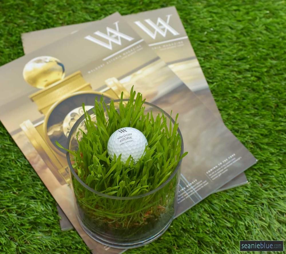 WA balls hilton 1200 40-4612.jpg