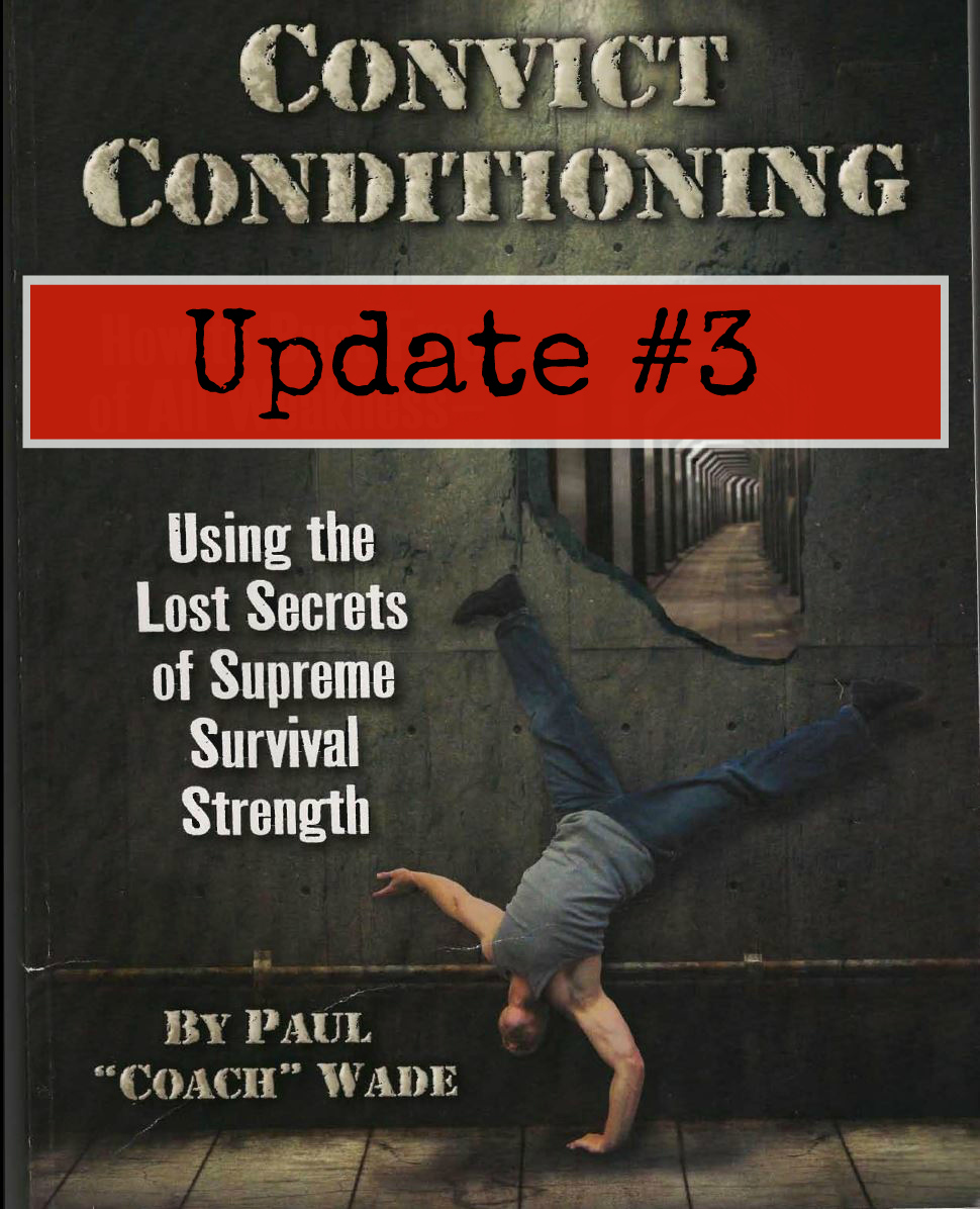 convict conditioning progressions