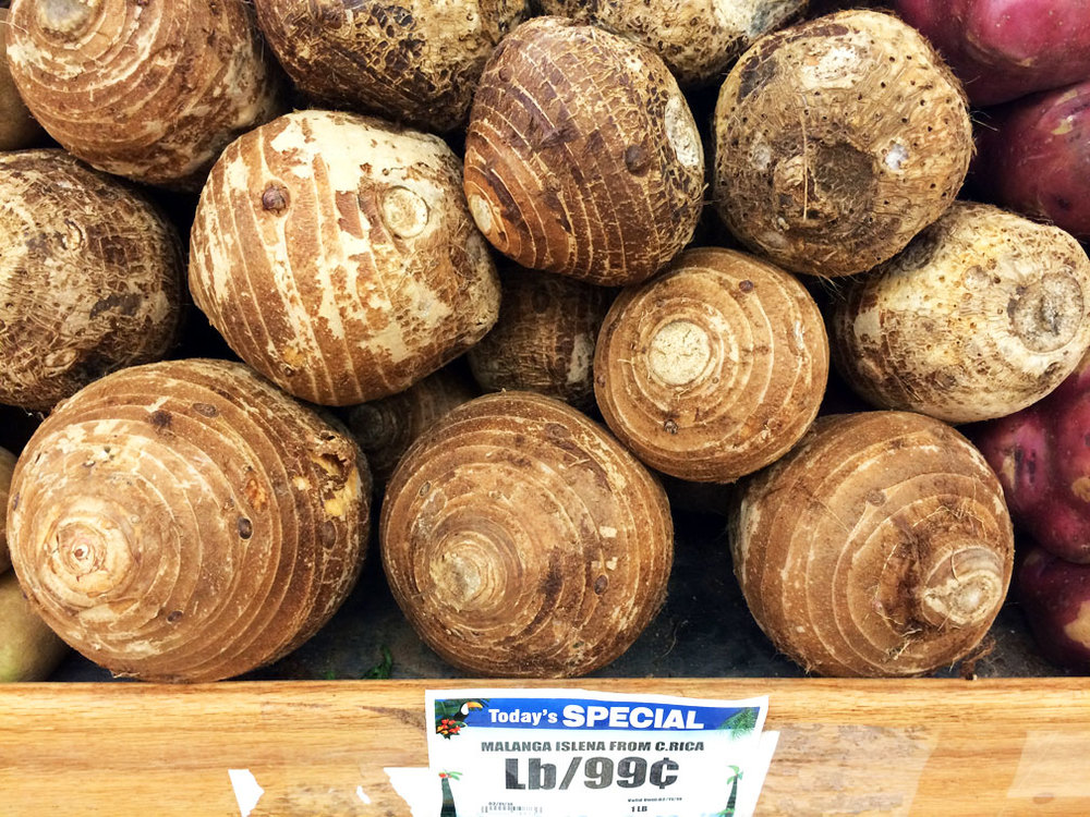Taro, labeled as malanga isleña, even though it belongs to a different genus.