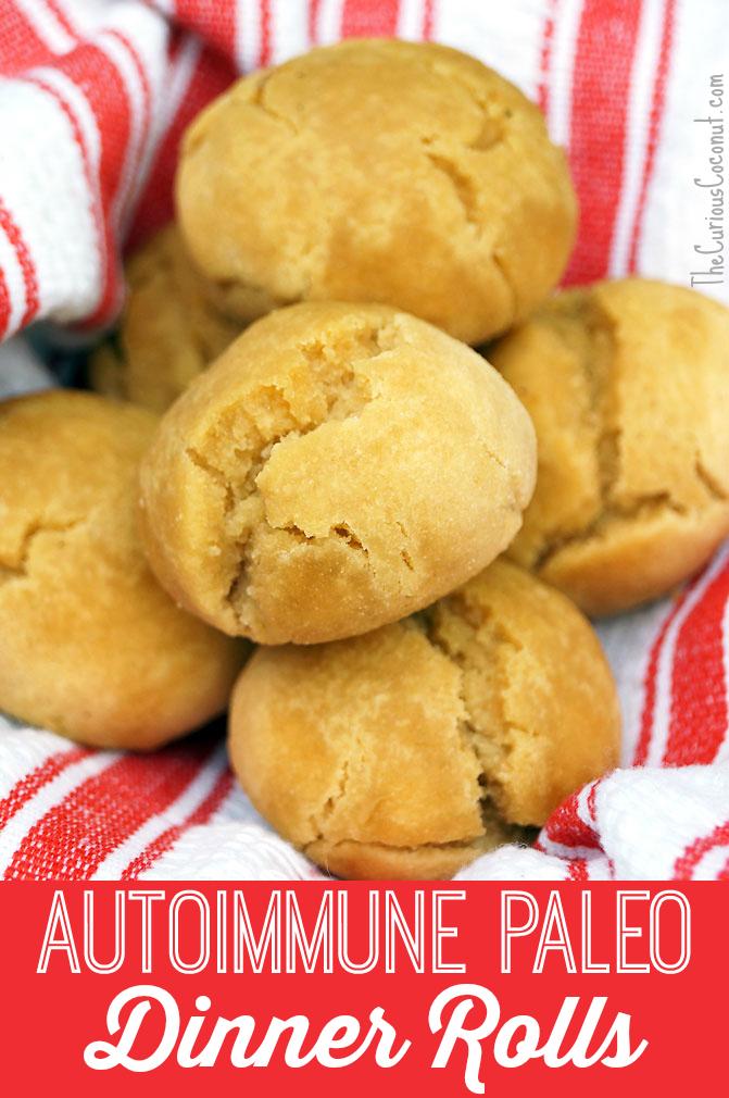 autoimmune paleo dinner rolls // thecuriouscoconut.com #paleo #aip #bread #thanksgiving #holidays
