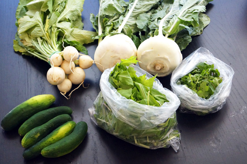kohlrabi-turnip-fall-salad-paleo.jpg