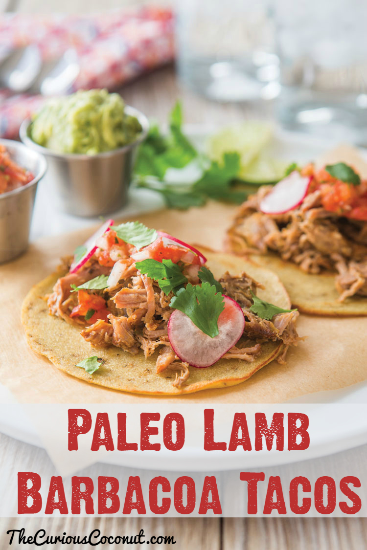 #Paleo Lamb Barbacoa Tacos // TheCuriousCoconut.com