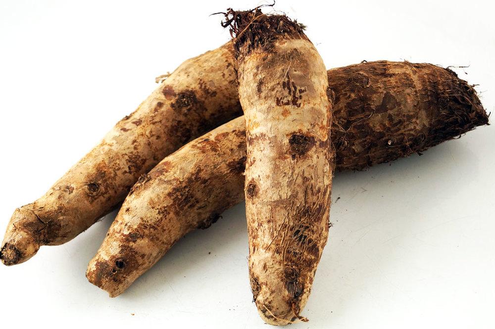 malanga root paleo rice substitute