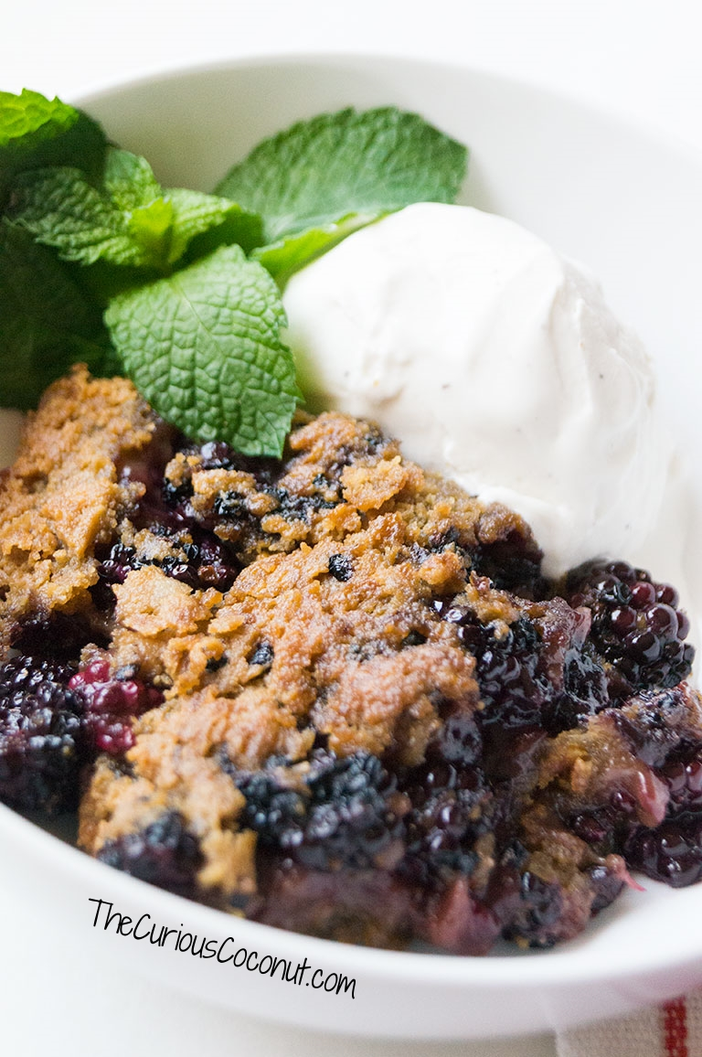 Cuppa Cuppa Sticka Fruit Cobbler made Paleo & AIP with cassava flour // TheCuriousCoconut.com