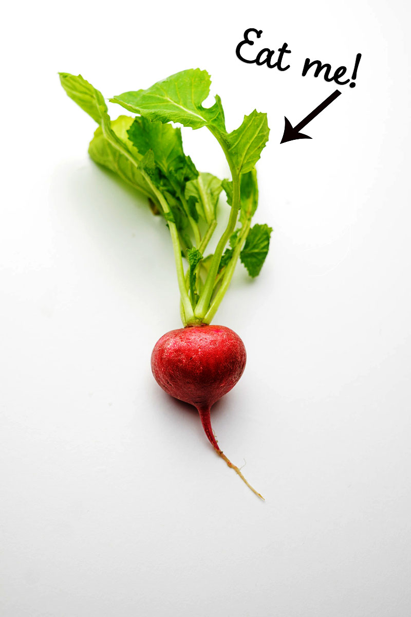 Radish greens have significantly more nutritional value than the roots, particularly vitamin C, vitamin K, vitamin A precursors, iron, and calcium as well as antioxidants as flavonoids. Don't throw them away! They are the perfect #Paleo #AIP or #keto veggie. Learn how to cook them at www.thecuriouscoconut.com