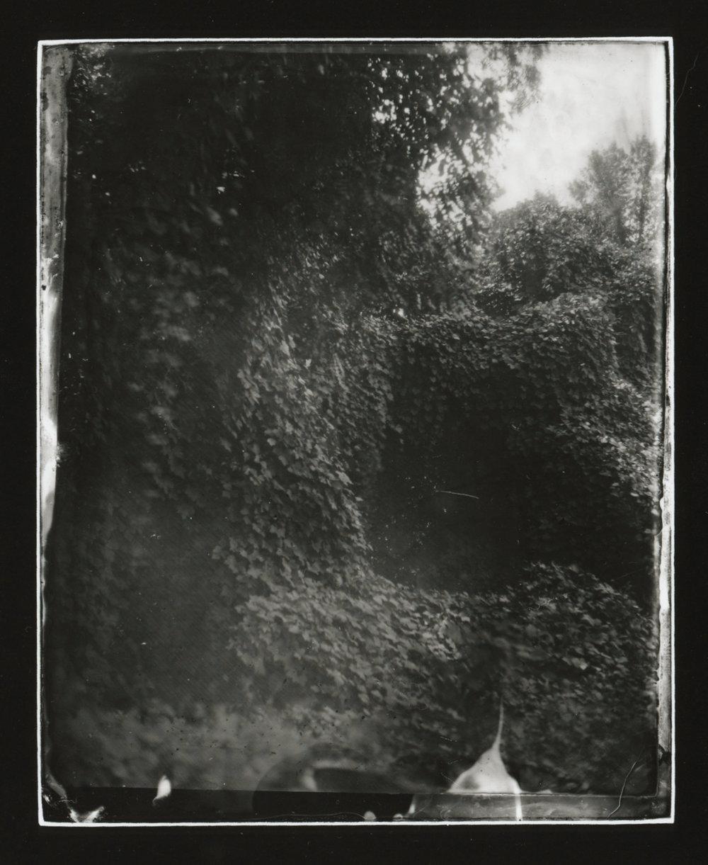 CollodionLandscapes-18.JPG